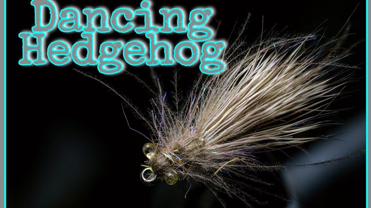 Dancing-Hedgehog