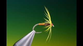 Fly-Tying-a-Soft-hackle-wet-fly-with-Barry-Ord-Clarke