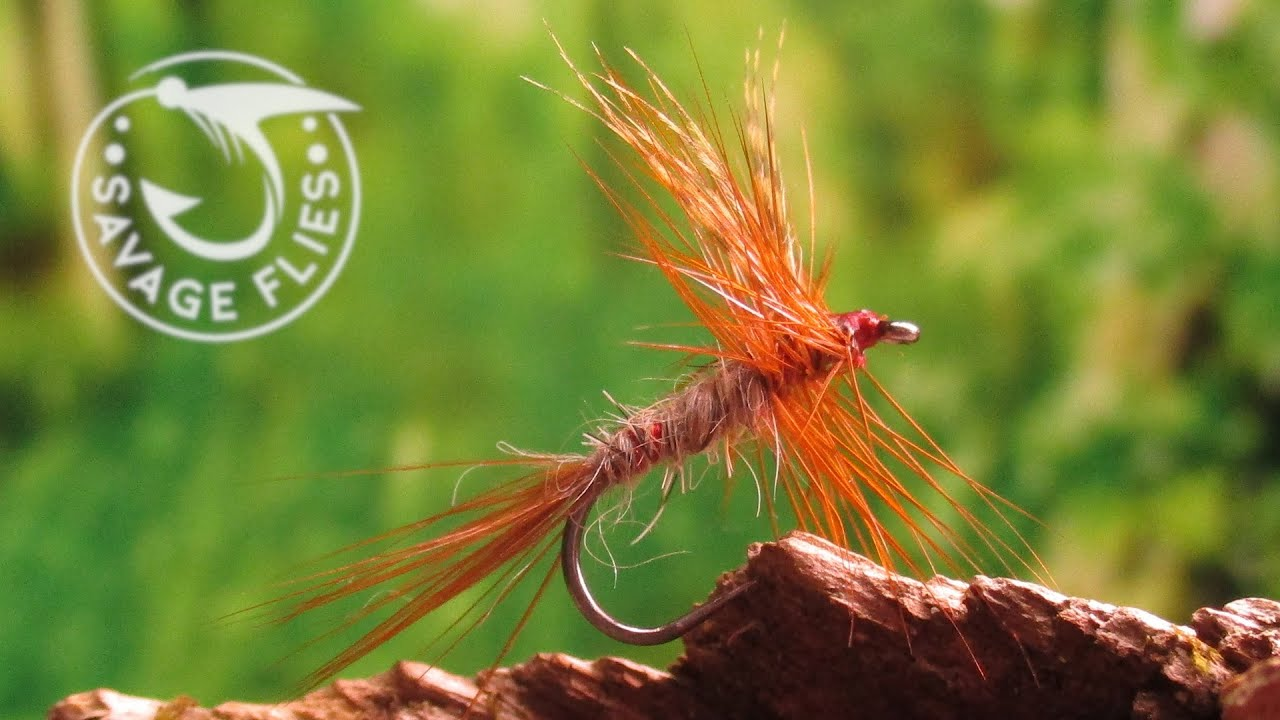 Fly-Tying-the-Bradley-Special-Catskill-Style-Dry-Fly-Pattern