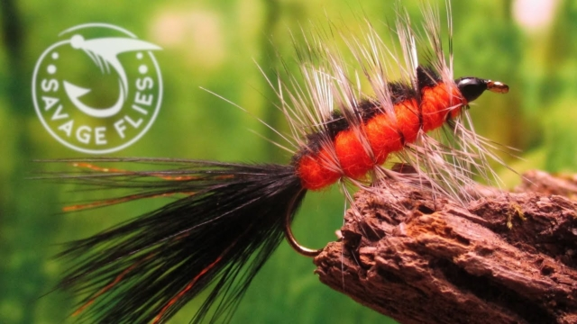 Fly-Tying-the-Orange-Belly-Micro-Streamer