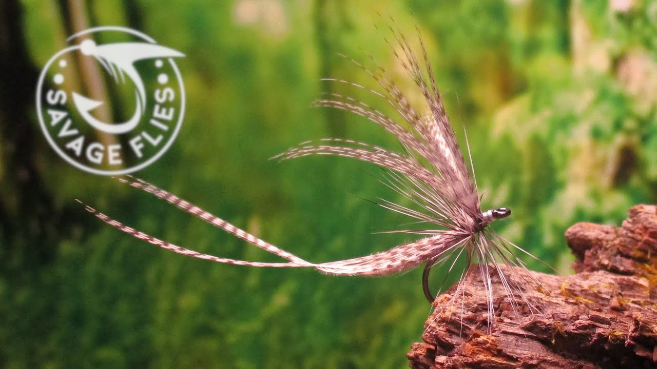 Fly-Tying-the-Two-Feather-Harry-Darbee-Catskill-Dry-Fly