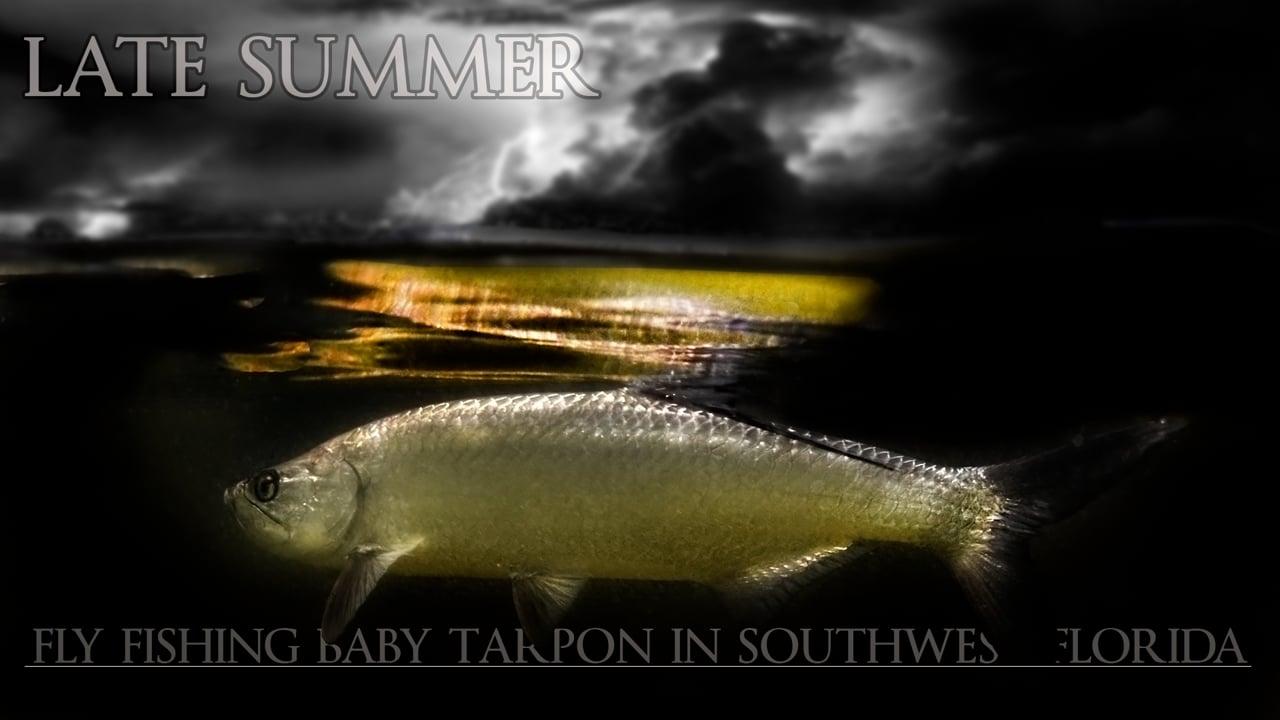 Late-Summer-Fly-Fishing-Baby-Tarpon