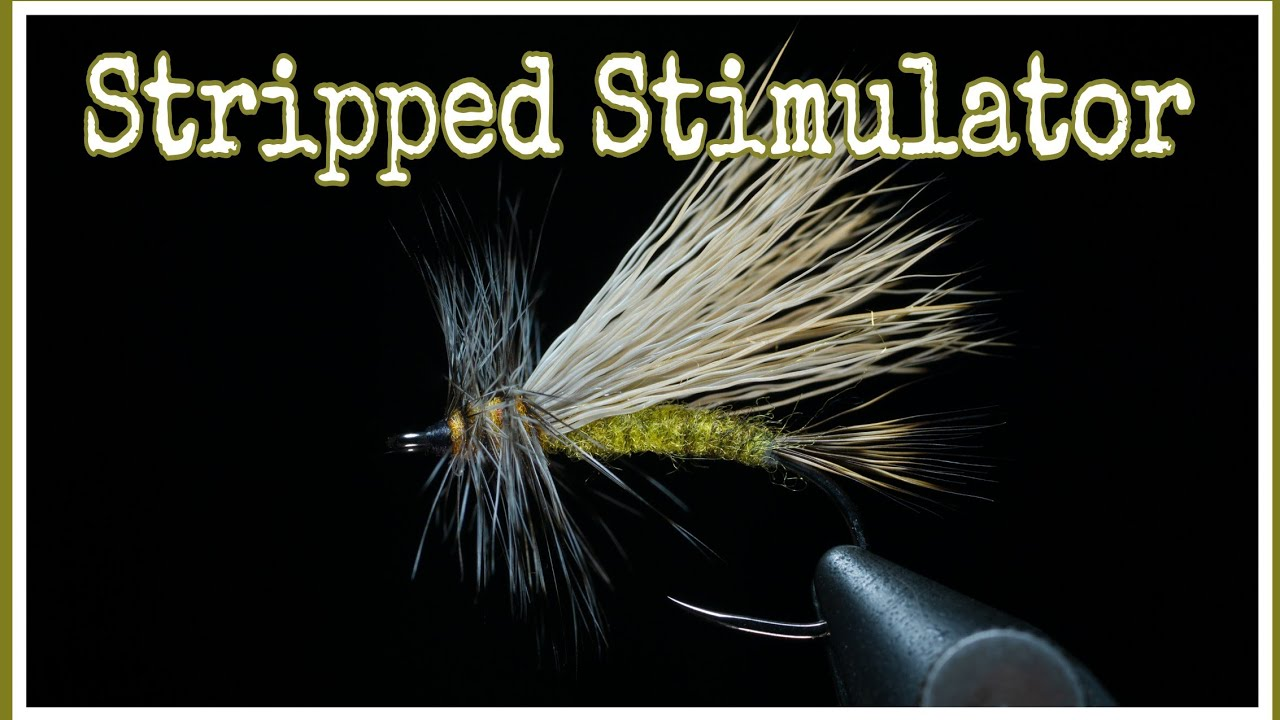 Stripped-Stimulator-tie-clean-wings