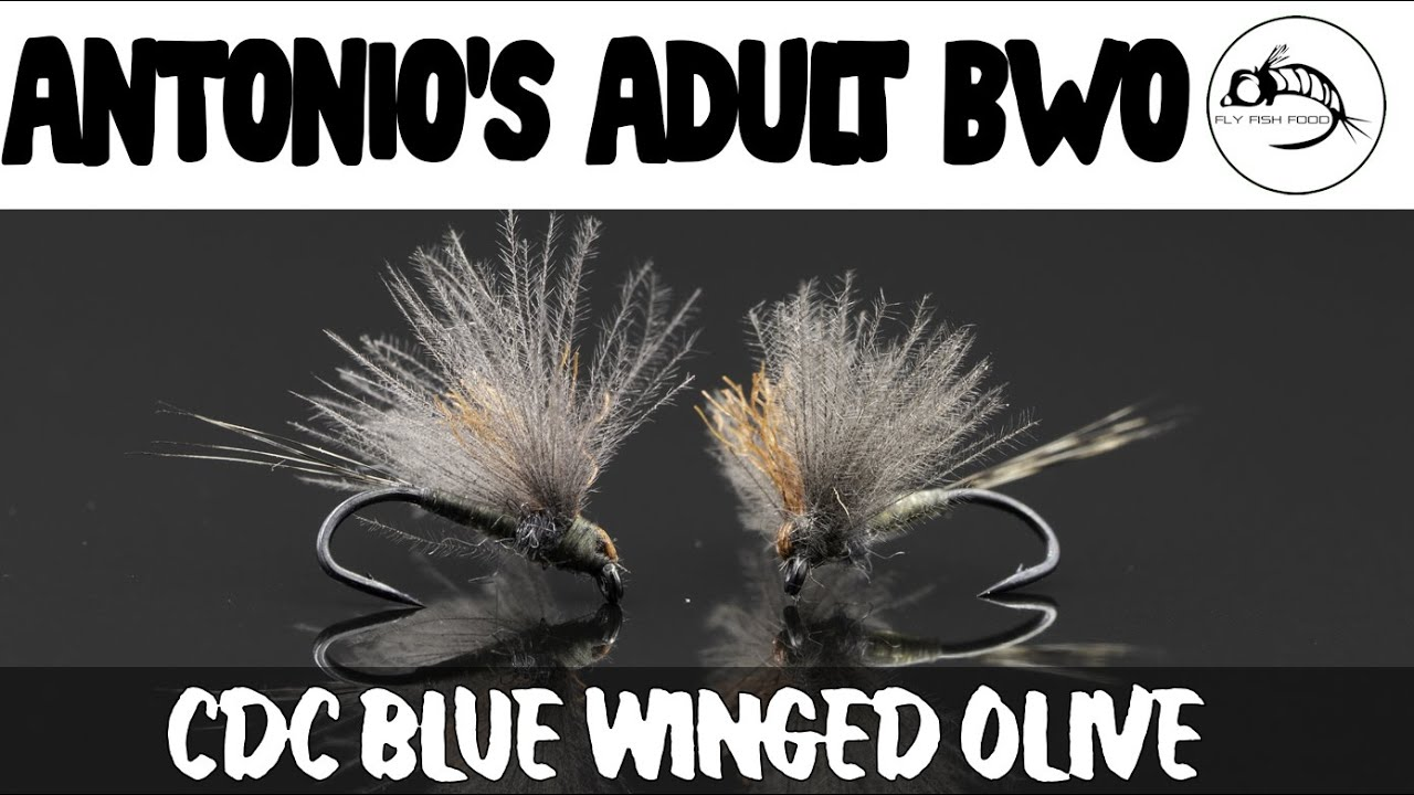 FLY-TYING-TUTORIAL-Antonios-Adult-BWO-DRY-FLY
