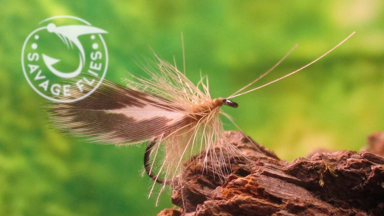 Fly-Tying-a-Spent-Wing-CDC-Caddis-Dry-Fly-Pattern