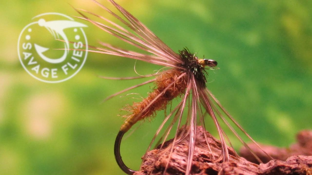 Fly-Tying-the-Winter-Brown-Classic-Spider-NymphWet