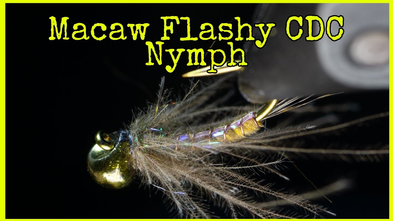 Macaw-Flashy-CDC-Nymph