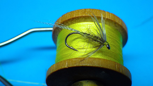 Tying-a-March-Brown-Spider-Soft-Hackle-Wet-by-Davie-McPhail